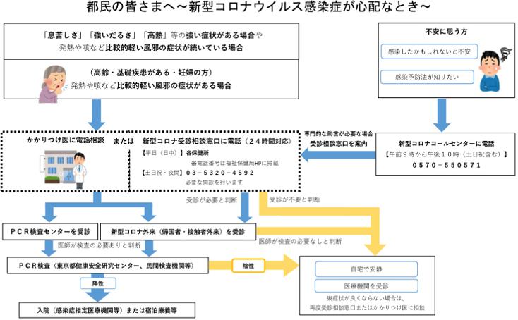 コロナチャート図